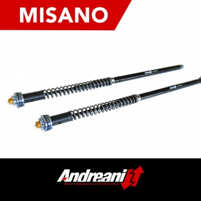 Cartucho Misano  DYNA SUPERGLIDE 99-04 Regulable para SHOWA 49